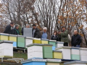 Visit to the second location of apiary